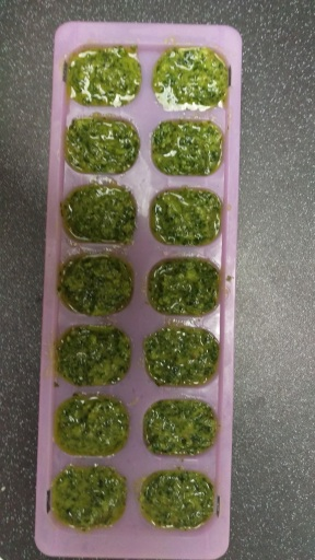 kale-walnut-pesto
