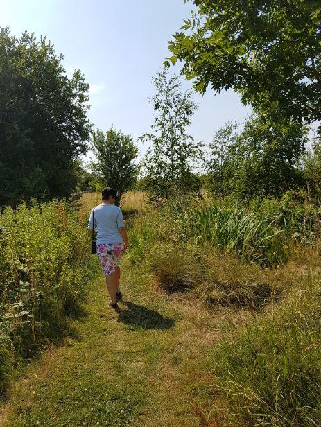 Long Lane Pasture