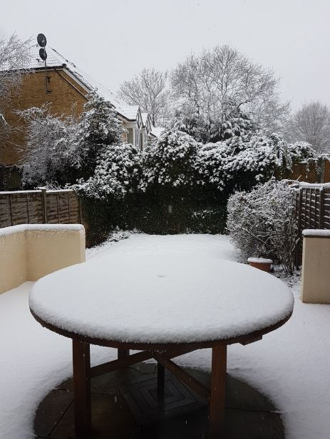 Snow on the Gidday patio